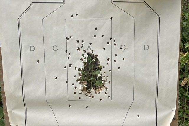 Wisconsin Concealed Carry Class